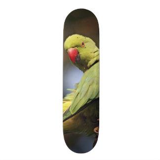 Roseringed Parakeet,Keoladeo National Park, Skateboard Deck