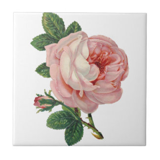 Roses are Pink Ceramic Tile