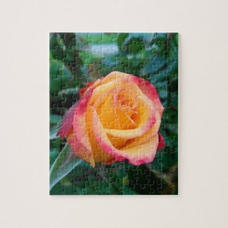 Roses aren't always red jigsaw puzzle