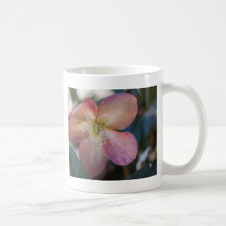 roses dans le jardin mugs à café