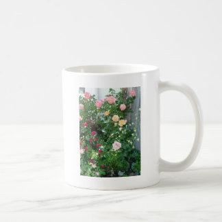 roses de jardin mugs à café