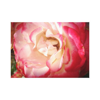 ROSES FIRE CANVAS PRINT