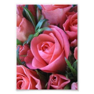 Roses Impression Photographique