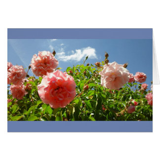 Roses in Monet's Garden Card