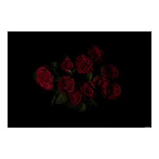 Roses in the dark poster