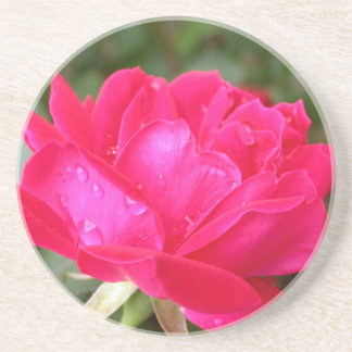 Roses in the Rain Coaster