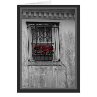 Roses in Window Card