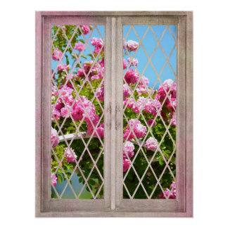 Roses in Window Poster