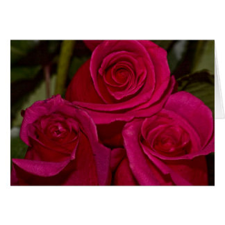 roses of three card