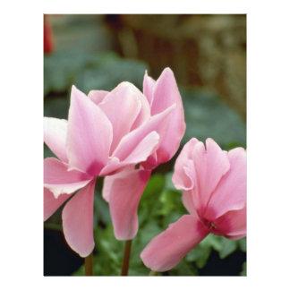 Roses pâles prospectus personnalisés