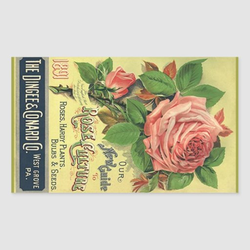 Roses vintages d'héritage d'autocollant annonçant