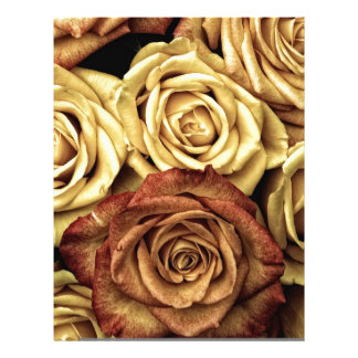 Roses yellow and red letterhead