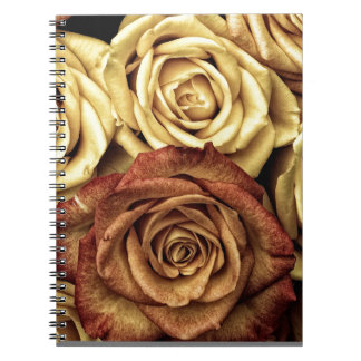 Roses yellow and red note books
