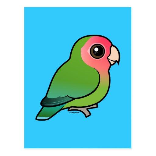 Rosy-faced Lovebird Postcard