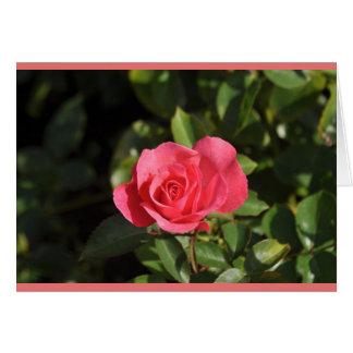 Rosy Outlook Blank Card