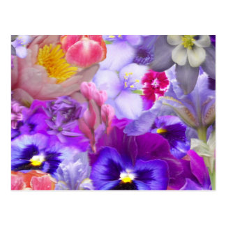 Rotary Garden Postcard