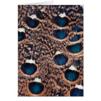 Rothschild Peacock-Pheasant Feathers Card