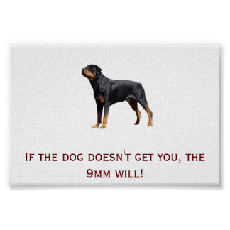Rottweiler and 9mm poster