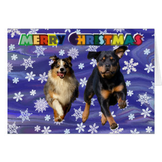 Rottweiler and collie dog christmas card