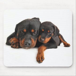 Rottweiler Brown & Black Puppy Dog Love Mouse Pad