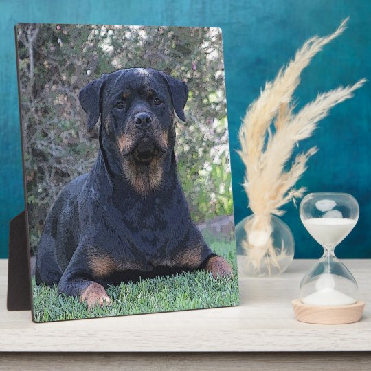 Rottweiler Display Plaque