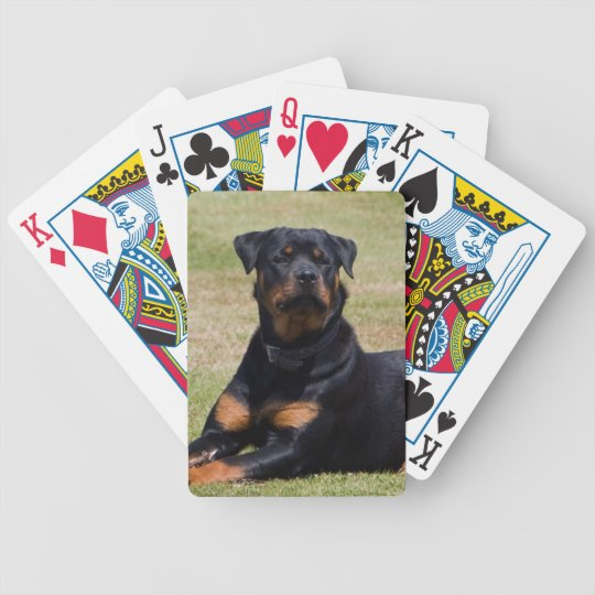 Rottweiler dog beautiful photo, gift poker deck