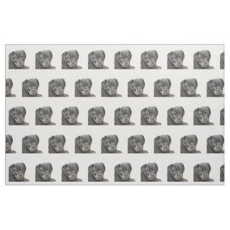 Rottweiler dog fabric
