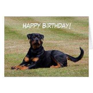 Rottweiler dog happy birthday greetings card