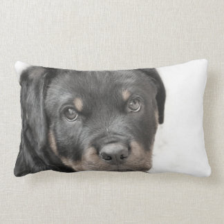 Rottweiler dog lumbar throw pillow