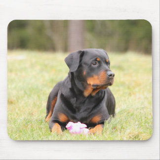 Rottweiler Dog Mouse Pad