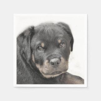 Rottweiler dog paper napkins