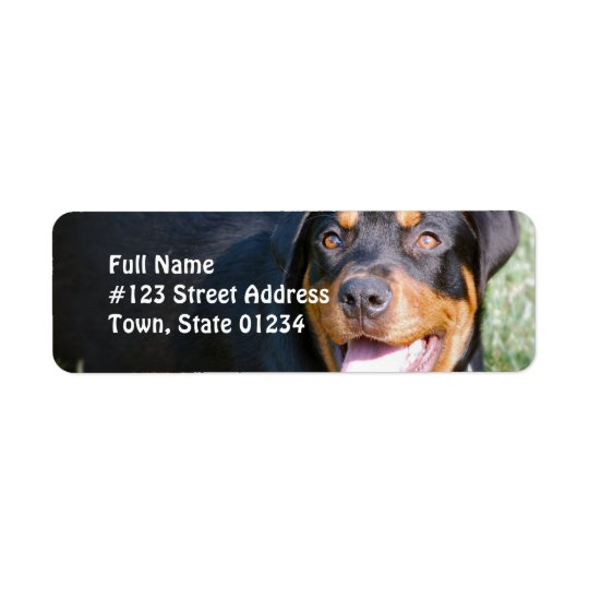 Rottweiler Dog Return Address Label