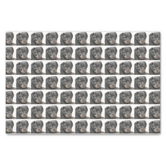 Rottweiler dog tissue paper