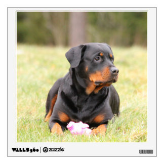 Rottweiler Dog Wall Decal
