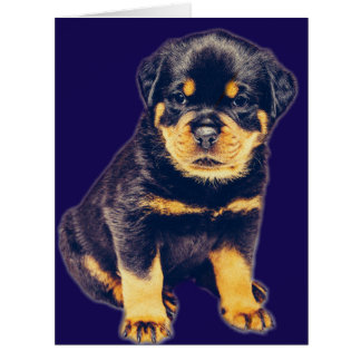 Rottweiler for any occasion card
