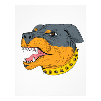 Rottweiler Guard Dog Head Aggressive Drawing Letterhead