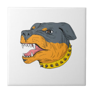 Rottweiler Guard Dog Head Aggressive Drawing Tiles