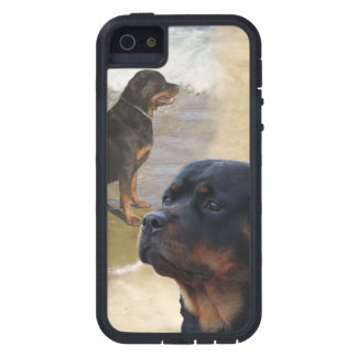 Rottweiler iPhone 5 Case