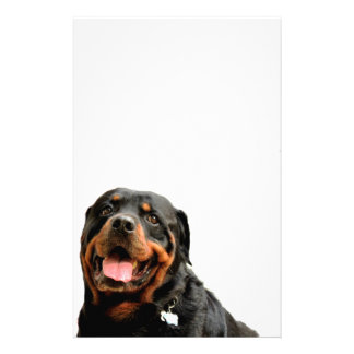 Rottweiler Love Customized Stationery