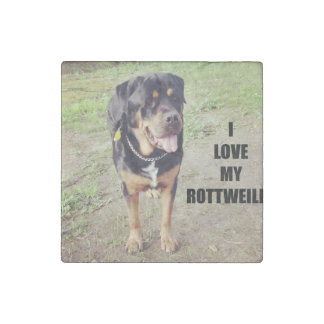 rottweiler love w pic tan stone magnets