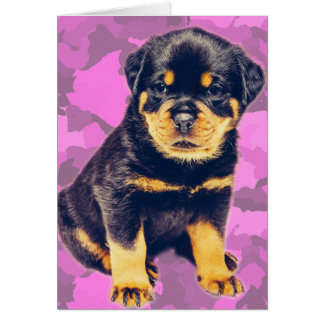 Rottweiler on Pink Camo for any occasion Card