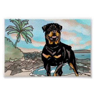 Rottweiler Playing at Hawaii Beach Poster