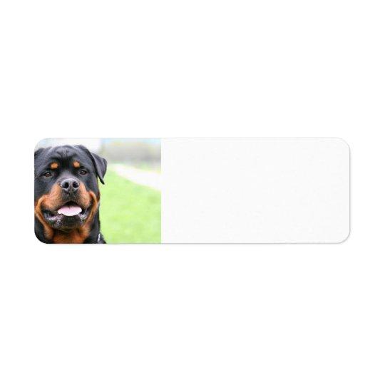 Rottweiler.png Return Address Label
