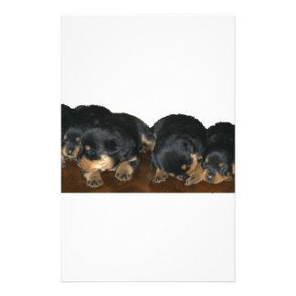 rottweiler Puppies Custom Stationery