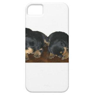 Rottweiler Puppies iPhone 5 Case