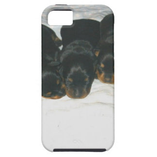 Rottweiler Puppies iPhone 5 Cover