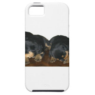 Rottweiler Puppies iPhone 5 Covers