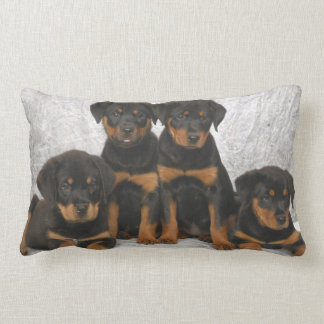 Rottweiler puppies lumbar pillow