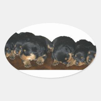 rottweiler Puppies Oval Sticker