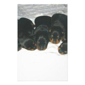 Rottweiler Puppies Stationery Design